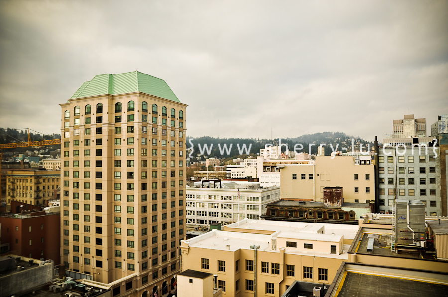 view of Portland, Oregon from fourteenth floor